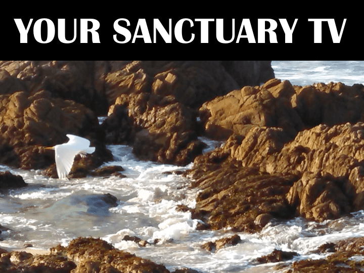 Your Sanctuary TV